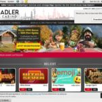 Adler Casino Codes