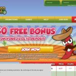 Bingo Gringo Sign Up Offer