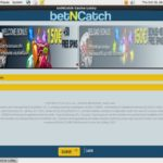 New Bet N Catch Account