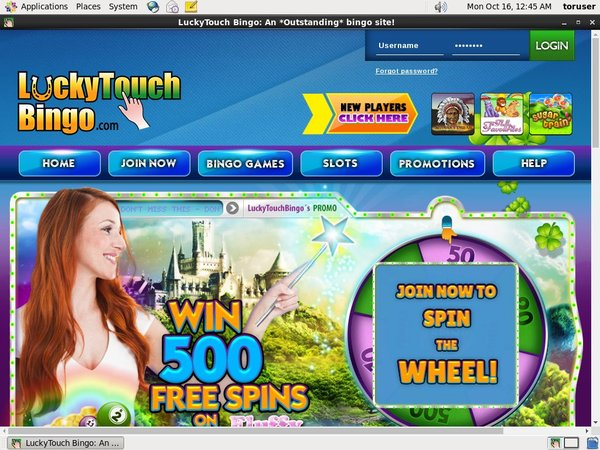 Luckytouchbingo Pay Vision
