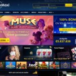 Casinomaxi Dotpay