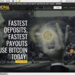 Betdna Web Money