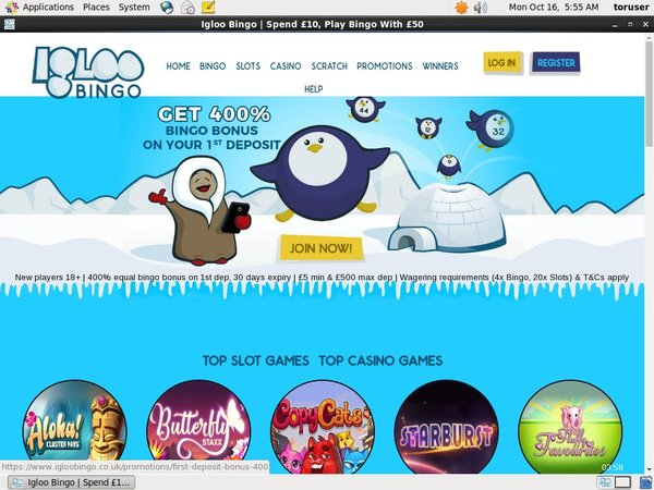Igloo Bingo Casino App