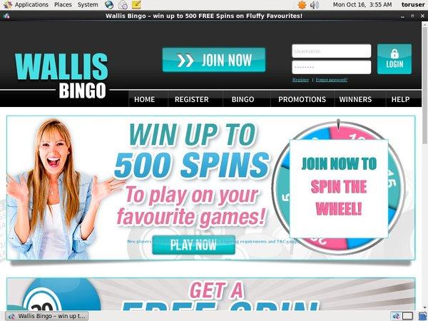 Wallis Bingo Poker Windows