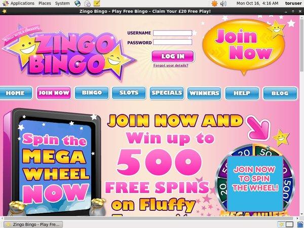 Zingobingo 免费